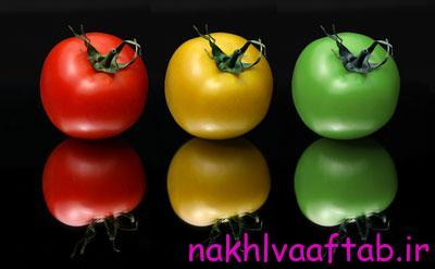 خواص شفابخش گوجه فرنگی از دانه های آن نشأت می گیرد.