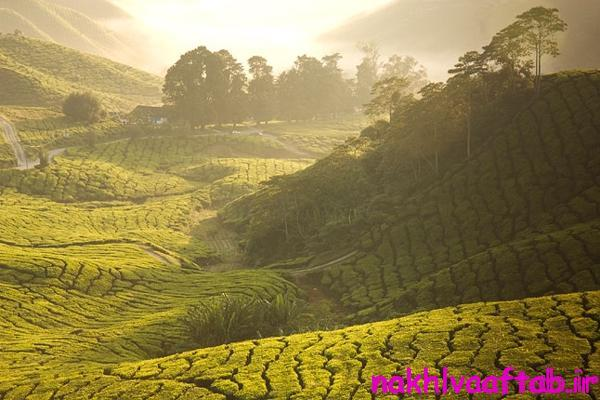 beautiful-pictures-of-malaysia(12)