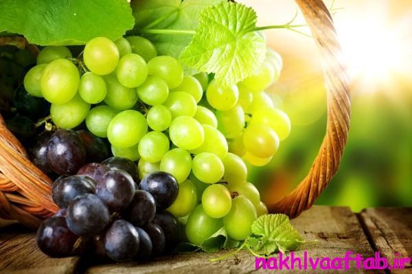 benefits-grapes
