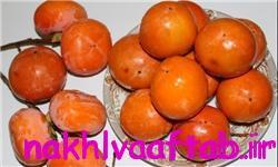 خبرگزاری فارس: خواص تغذیهای و درمانی یک میوه پاییزی/ خرمالو بهترین پاککننده کبد و معده