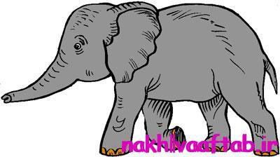 داستان جالب و آموزنده فیل سیرک